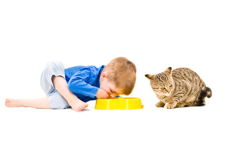 Joint food boy and cat  from the same bowl Stock Photo