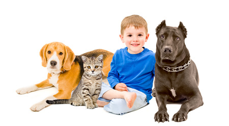Boy, cat and two dogs sitting together photo