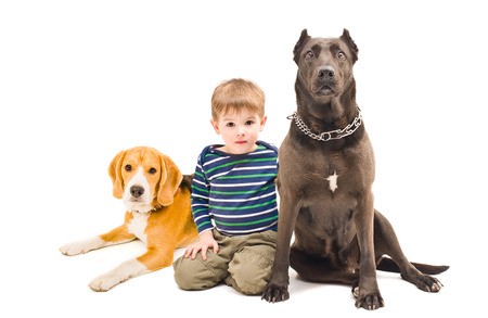 Beautiful little boy sitting with two dogs photo