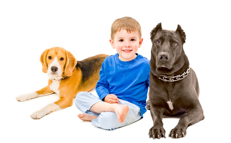 Portrait of beautiful boy sitting with two dogs photo