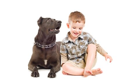 black and white pit bull:  Laughing cute boy and big dog sitting together