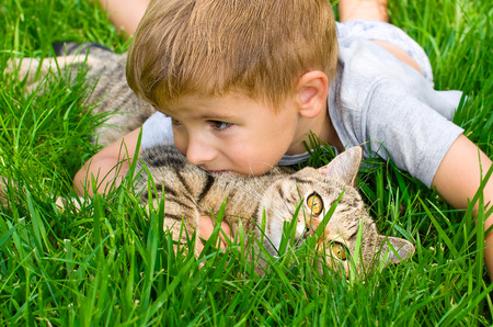 Cute boy with a kitten hugging lying in the grass Stockfoto