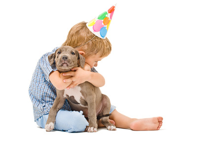 Boy hugs the puppy pitbull of given a present to birthday photo