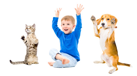 Cheerful boy, dog and cat  together with hands raised photo
