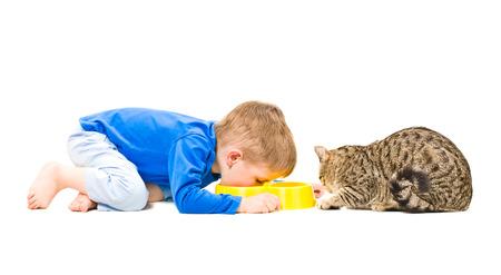 Junge und Katze essen zusammen aus der gleichen Schüssel