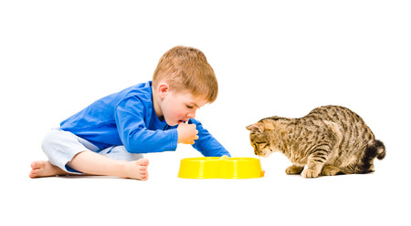 Boy and cat eat together from the same bowl photo