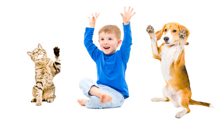 Happy boy, dog and cat together with hands raised