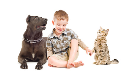 Happy boy, dog and cat sitting together photo