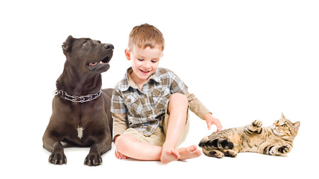 Laughing boy sitting with a dog and cat photo