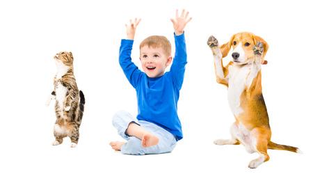 Playful boy, dog and cat isolated on white background photo