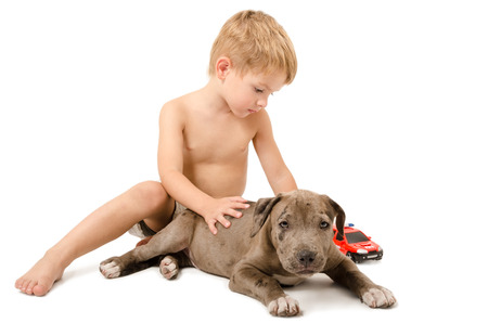 Boy playing with the puppy pitbull and fire machine isolated on white background photo