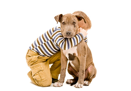Boy hugging a puppy pit bull isolated on white background