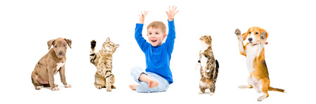 Group of a cheerful pets and boy together isolated on white background photo