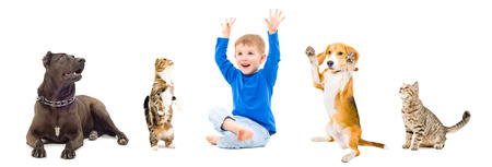 Group of a pets and cheerful boy sitting together isolated on white background photo