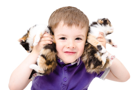 Portrait of a happy boy playing with kittens isolated on white background