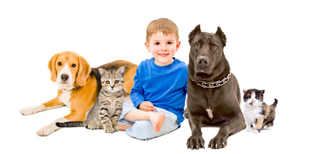 Group of pets and happy child sitting together isolated on white background