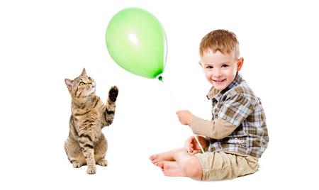 scottish straight: Happy boy and cat Scottish Straight sitting together isolated on white background