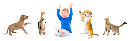 group of pets: Group of a cheerful pets and kid together isolated on white background