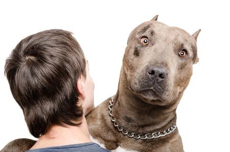 Ritratto di un pit bull sulla spalla di un giovane uomo isolato su sfondo bianco