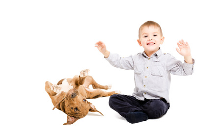 pit bull: Cheerful boy and playful pit bull puppy together isolated on white background Stock Photo