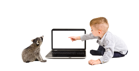 Child points finger at the screen of laptop, sitting with a raccoon, isolated on white background
