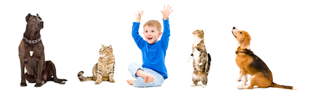 Group of a cheerful kid and pets together isolated on white background Stock fotó