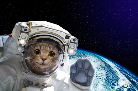 Cat astronaut in space on background of the globe. Elements of this image furnished by NASA. Stockfoto
