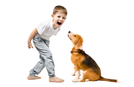 Angry boy screaming at his dog, isolated on a white background