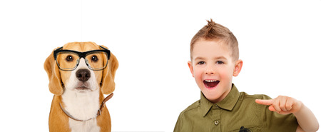 mockery: Portrait of a laughing boy, pointing finger on a beagle, isolated on white background Stock Photo