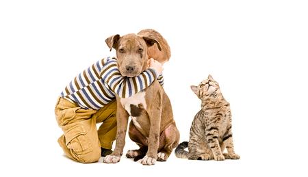 Amoroso muchacho abrazando el perrito del pitbull y un gato, aislados en el fondo blanco