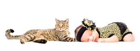 Portrait of cute newborn girl and cat Scottish Straight, isolated on white background