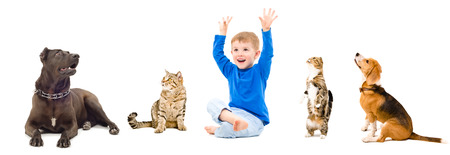 Group of a curious pets and happy boy, isolated on white background Imagens