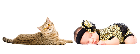 Portrait of cute newborn sleeping girl and cat Scottish Straight, isolated on white background Stock Photo