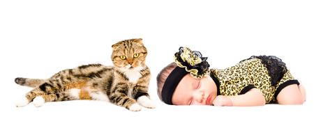 Cute sleeping newborn girl and cat Scottish Fold, isolated on white background