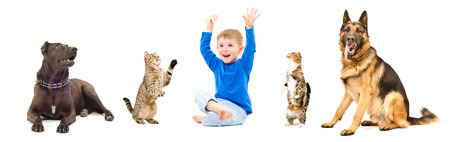 Group of playful pets and cheerful children together, isolated on white background Stock Photo