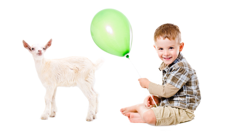 Happy boy and little goat playing with balloon isolated on white background