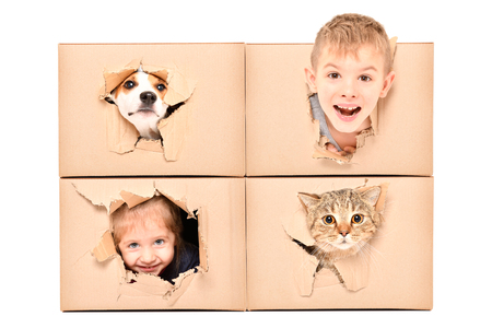 Funny kids and pets looking out for a torn hole in a box Banco de Imagens
