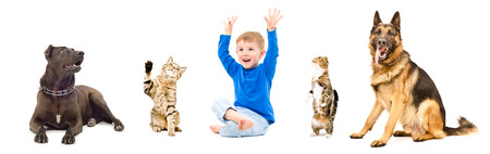 Group of playful pets and cheerful child together