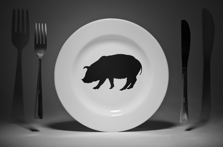 Plate with a picture of a pig Banco de Imagens - 119754635