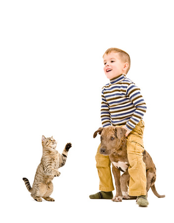 Cheerful boy playing with a puppy and cat