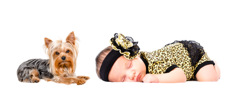Beautiful newborn girl sleeping together with her dog Stock Photo