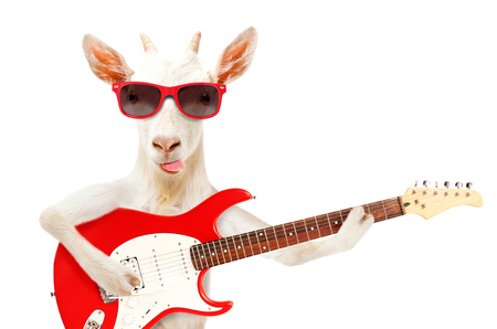 Funny goat showing tongue in sunglasses with electric guitar Stock Photo