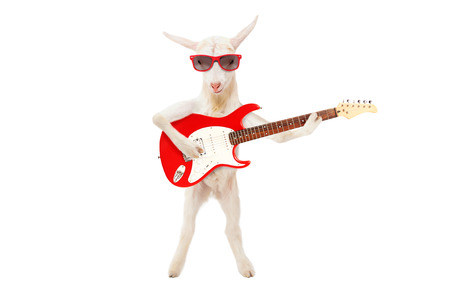 Funny goat in sunglasses with electric guitar