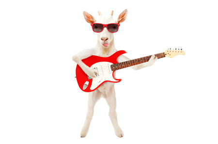 Funny goat showing tongue standing with electric guitar Stock Photo