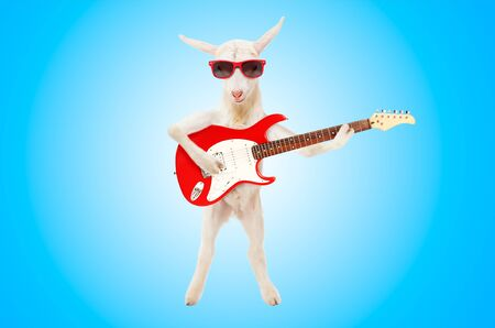 Goat in sunglasses with electric guitar on blue background