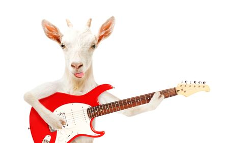 Funny goat showing tongue with electric guitar isolated on white background Standard-Bild - 133250832