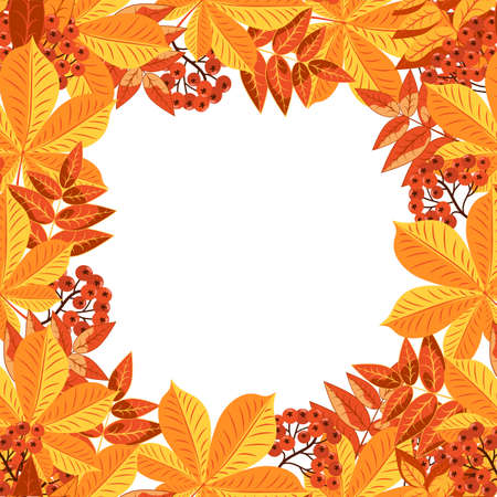 Autumn colorful square leaf frame isolated on white background. Autumn yellow and red foliage of trees, rowan berries are collected in the frame of the card.