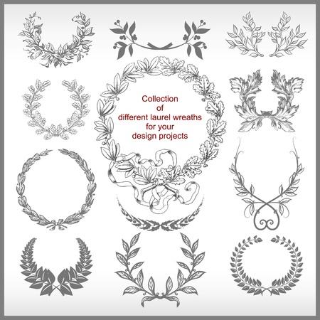 laurel leaf: Vector conjunto de coronas de laurel aislados Vectores