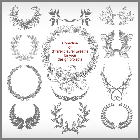 laurel leaf: vector set of laurel wreaths isolated