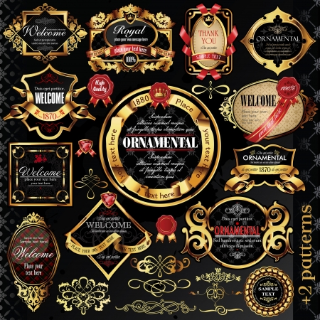 ornamental shield: calligraphic design elements and golden labels. Illustration